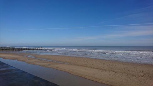 sunny sea